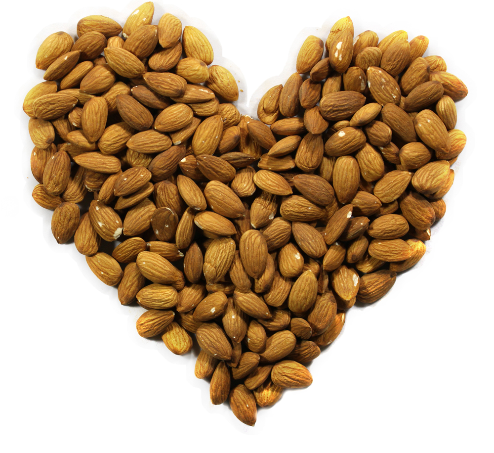 Heart of nuts on white background