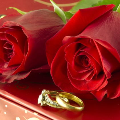 red roses and wedding rings on Gift box