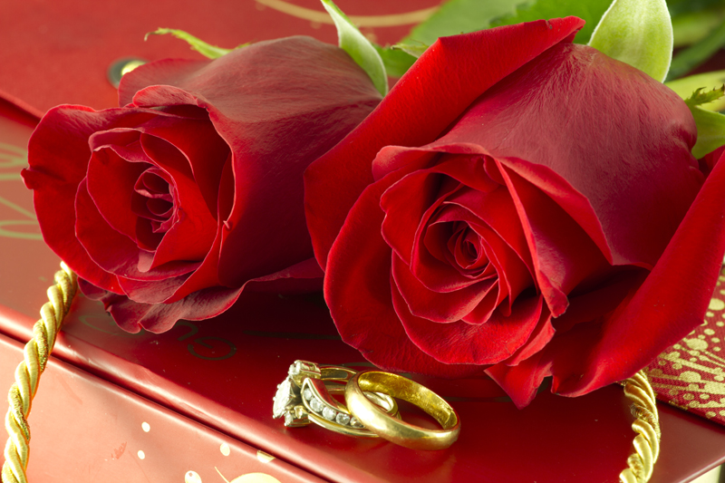 against wedding stock photo heart on the background rose rings a depositphotos red of