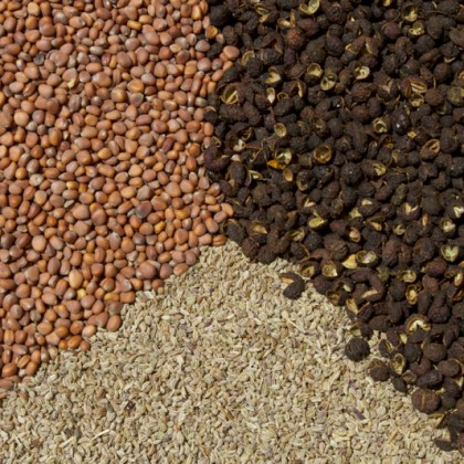 mix-seed-7-sm