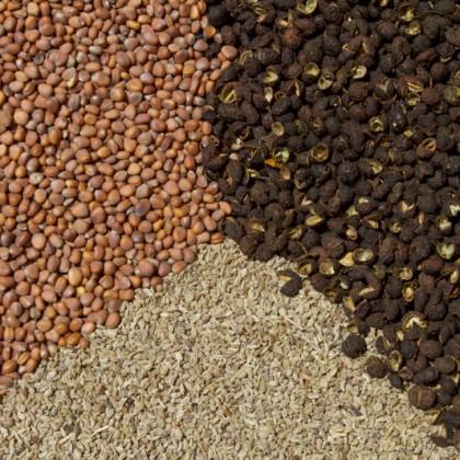 mix-seed-7-sm