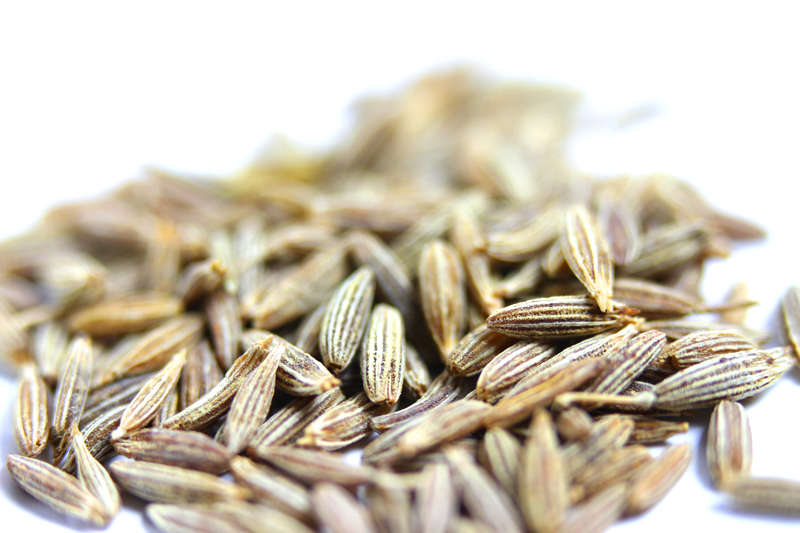 cumin seeds closeup