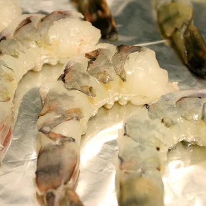 raw unshelled tiger shrimps