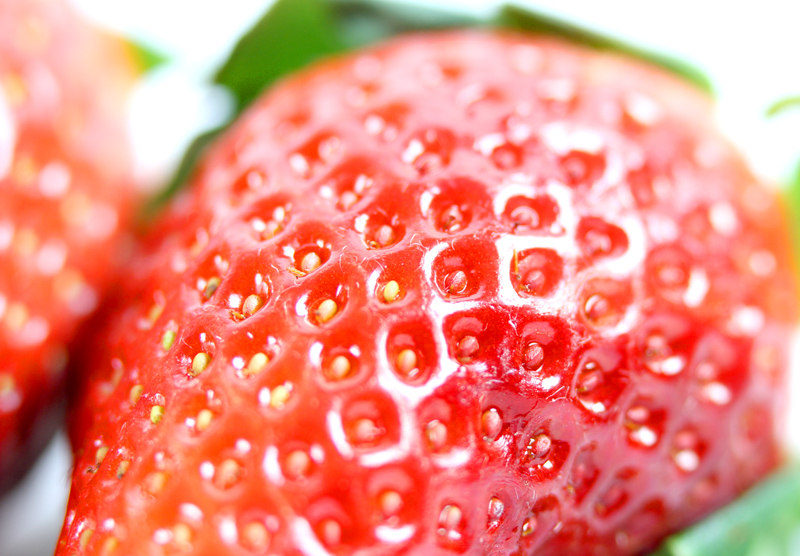 Strawberry  Closeup